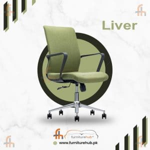 Liver Office Chair With Comfort Back Support On Sale At Furniturehub.Pk